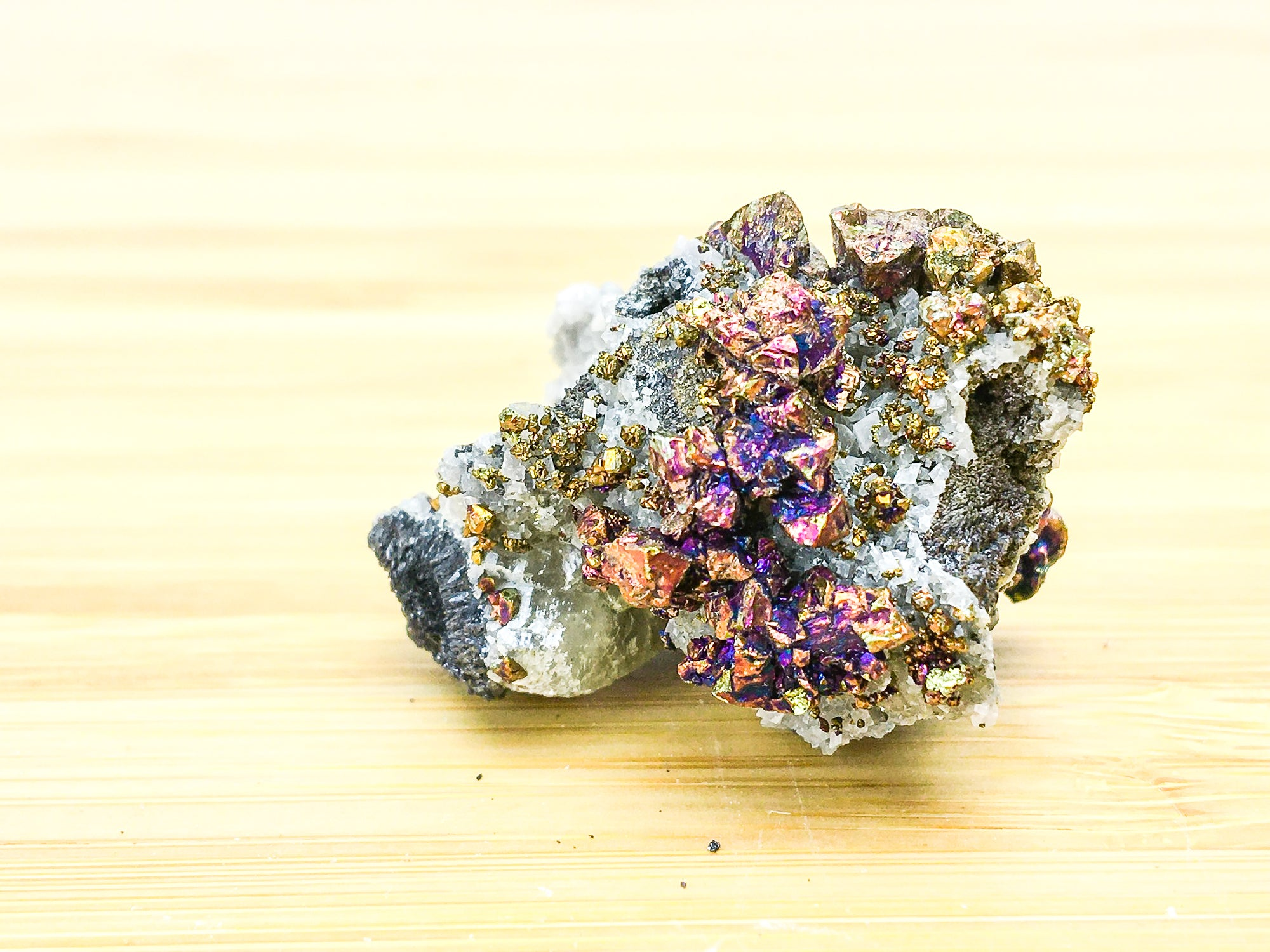oxidised purple and gold iridescent chalcopyrite on a white dolomite bed, some calcite is also present