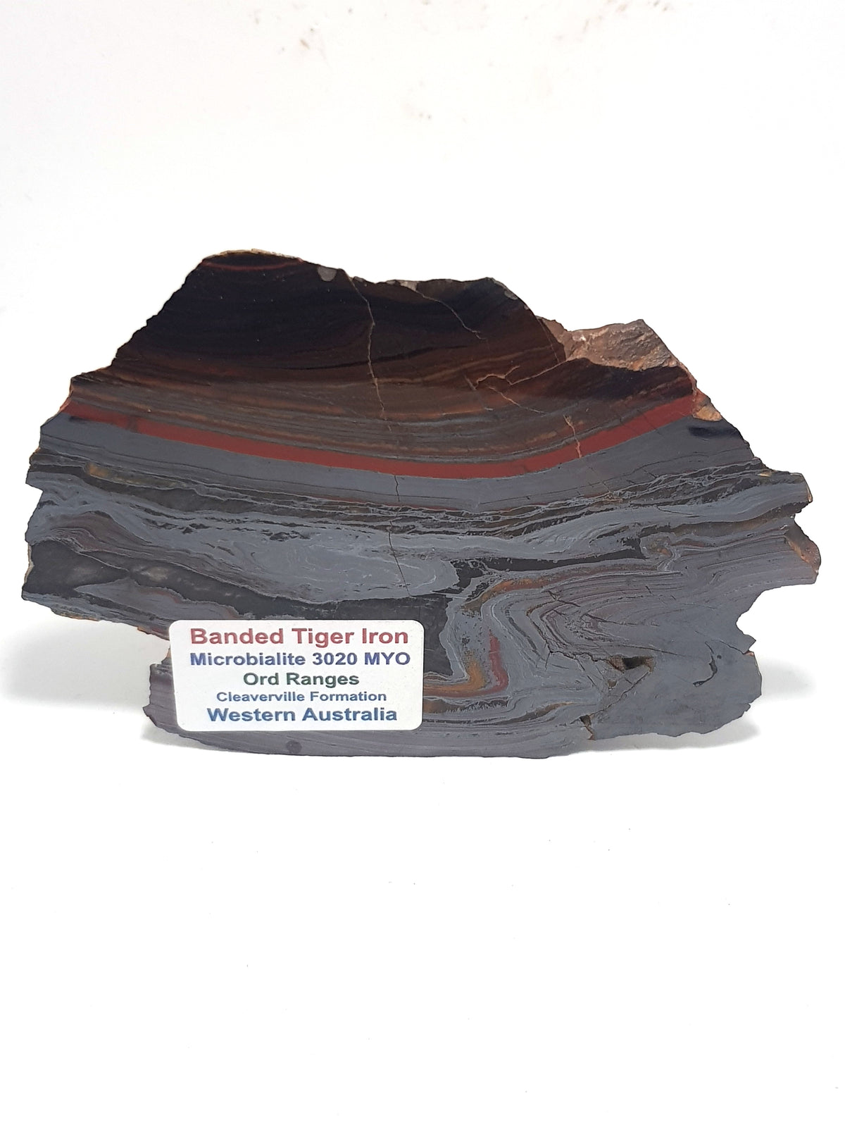 Polished banded iron slice. This is predominately silver in colour. It consists of thin silvery bands of hematite interspersed with a thick continuos band of red jasper and thinner bands of brown chert. The bands run parallel at the top of the sample. But the bottom part of the slice shows extensive folding and replacement with tiger eye.