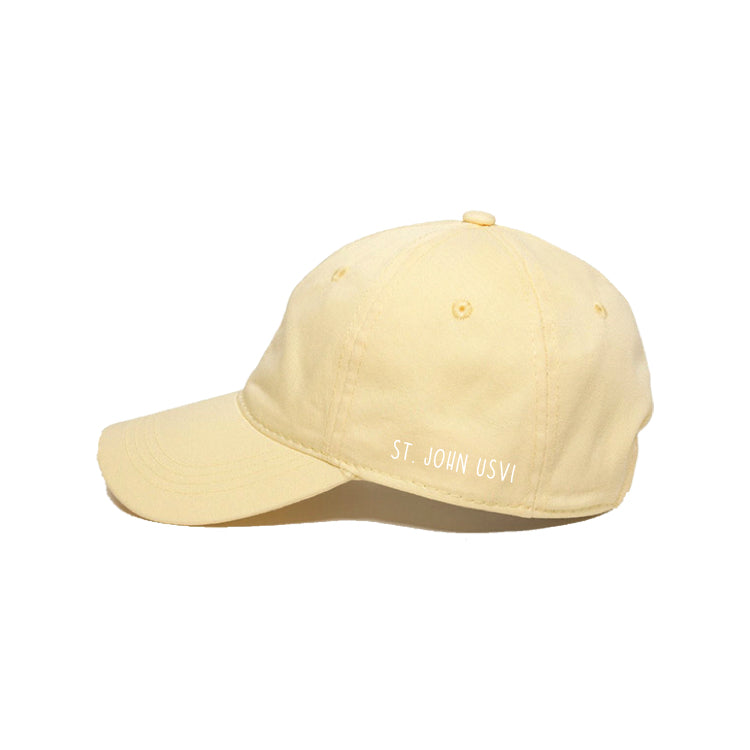 palm pop dad hat