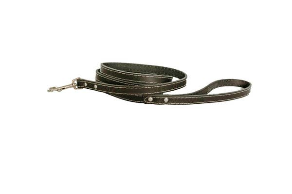 Euro-Dog Collars and Leads - 6
