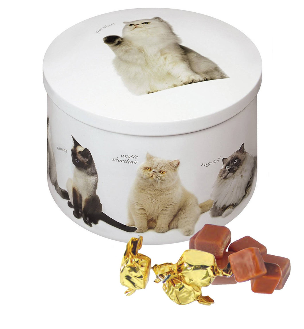 Cat Tin - Vanilla Fudge