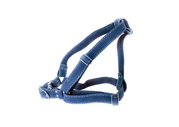 Euro-Dog Collars and Leads - Harness - Navy Large