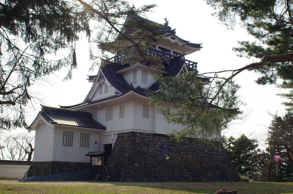 Akita: More than a Japanese prefecture