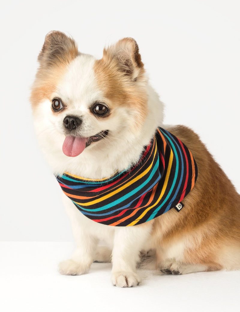 Doggie Bandana - Black Multistripe - The QT