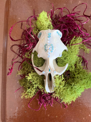 Small Animal Skull Adorned with Swarovski Crystals