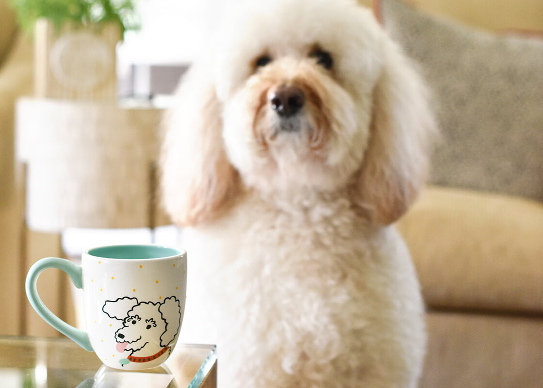 Pet Portrait Mug - Curly