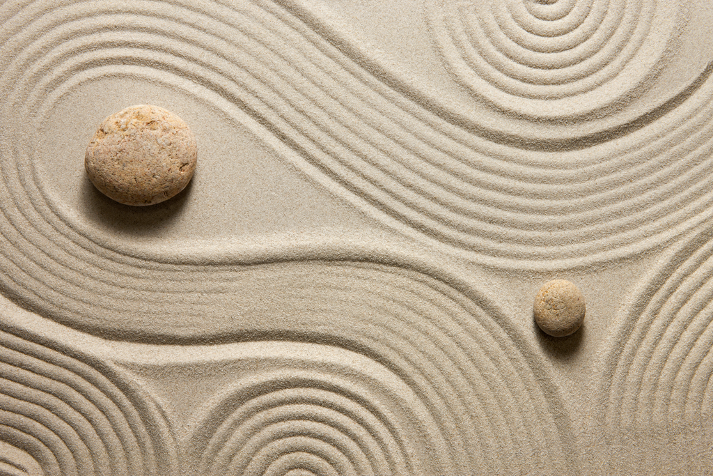Creating Your Mini Zen Garden
