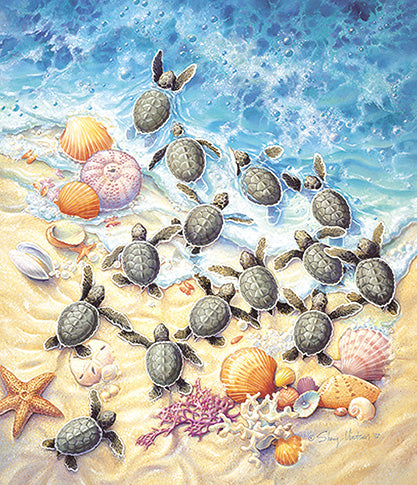 GREEN TURTLE HATCHINGS PUZZLE