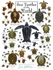SEA TURTLES OF THE WORLD PUZZLE