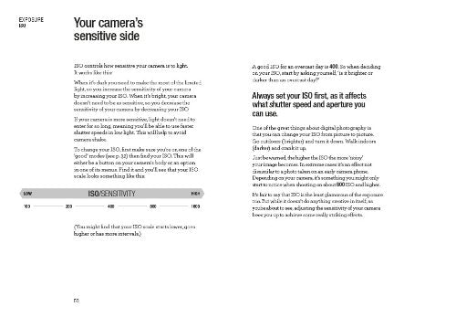 Read This If You Want to Take Great Photos