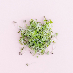 Load image into Gallery viewer, Sandwich Duo Microgreens, 1 oz
