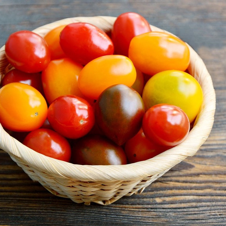 Mixed Color Cherry Tomatoes, 1 pt (10 oz)