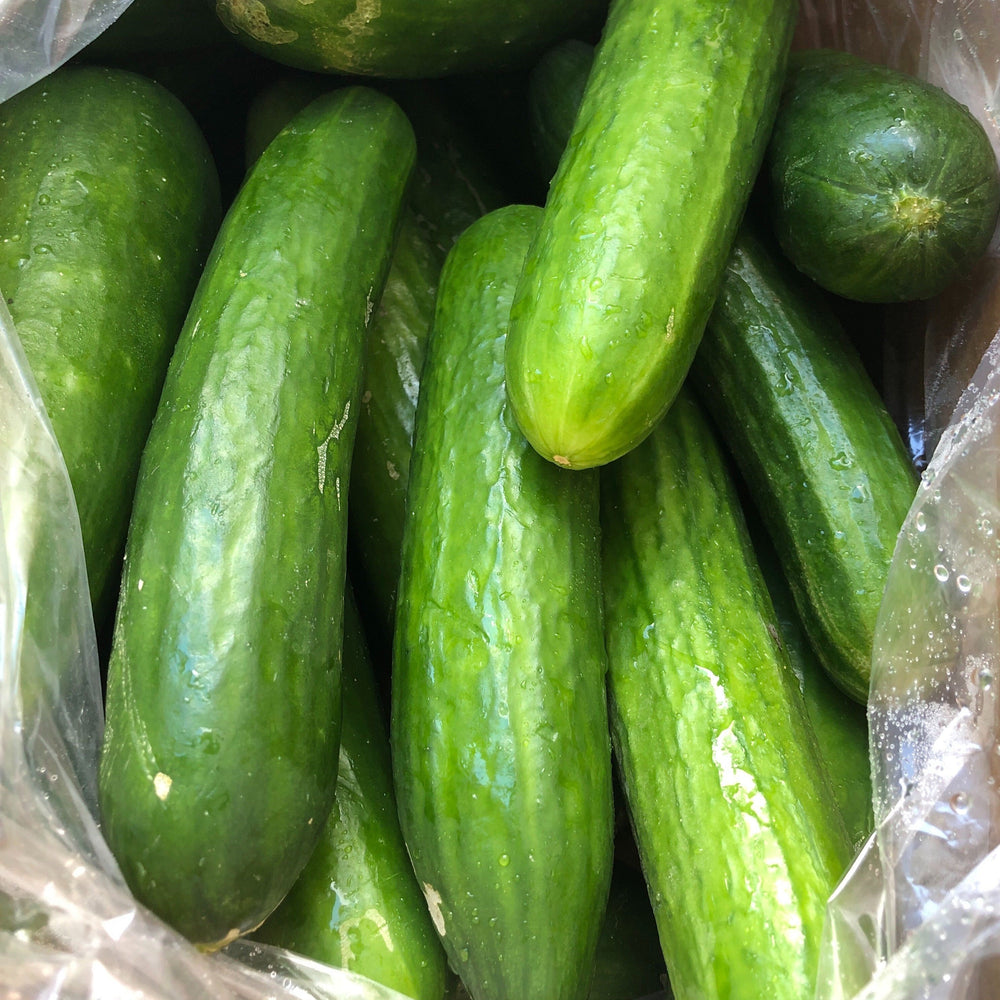 Load image into Gallery viewer, Organic Seedless Cucumbers, 1lb