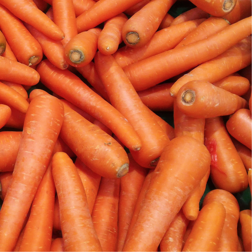 Load image into Gallery viewer, Carrots, 2lb bag