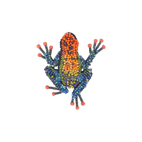 Amazonian Poison Dart Frog Embroidered Brooch
