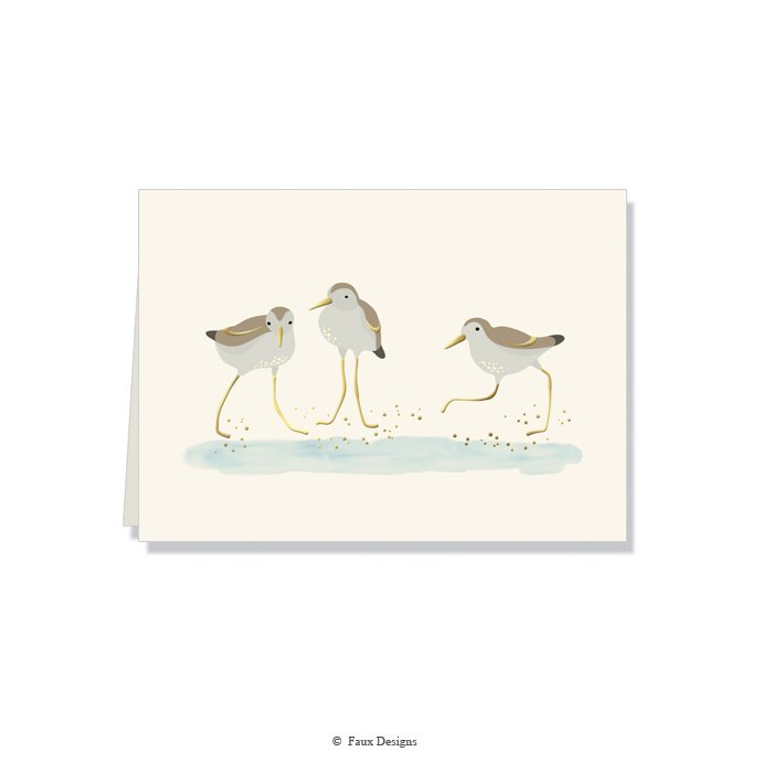 Folded Notes: Sand Plovers