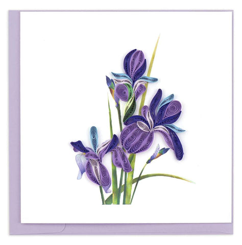 Quilled Bearded Iris Blank Card