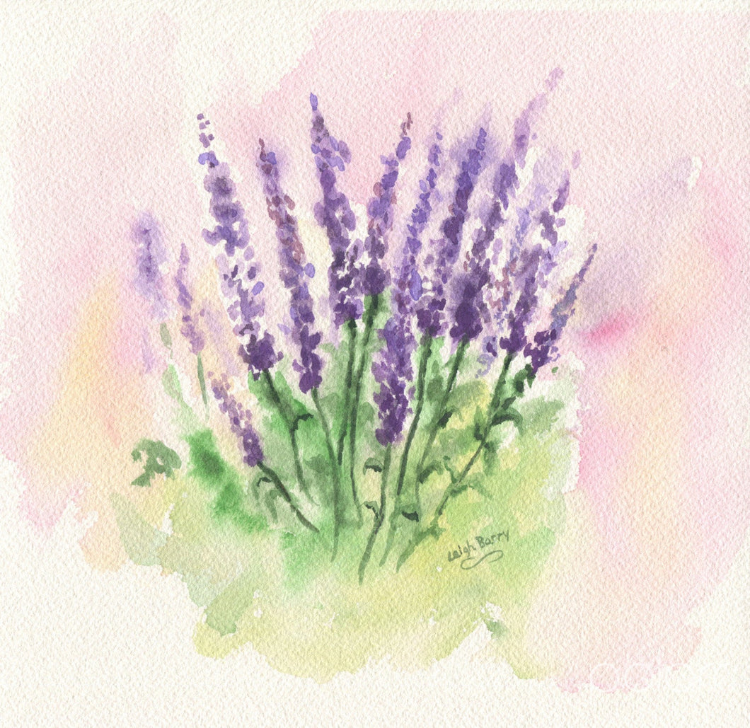Lavender: watercolor lavender print lavender painting purple flower painting purple floral print lavender art framed watercolor floral print - Leigh Barry Watercolors