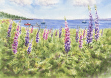 Load image into Gallery viewer, Maine Lupine: watercolor giclee print or original Maine watercolor print lupine art print Maine painting art print framed lupine painting