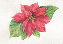 Load image into Gallery viewer, Poinsettia Tea Towel Christmas tea towels  kitchen decor Christmas floral painting art - Leigh Barry Watercolors