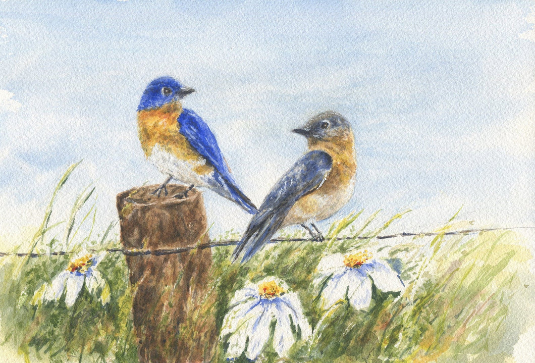 Bluebirds: Original watercolor painting bluebird painting country cottage art framed print bird art print gift ideas watercolor birds print