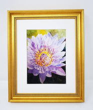 Load image into Gallery viewer, Chrysanthemum: Original watercolor painting flower painting framed floral print purple floral lavender flower art framed art print flowers - Leigh Barry Watercolors