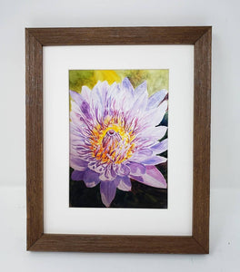 Chrysanthemum: Original watercolor painting flower painting framed floral print purple floral lavender flower art framed art print flowers - Leigh Barry Watercolors