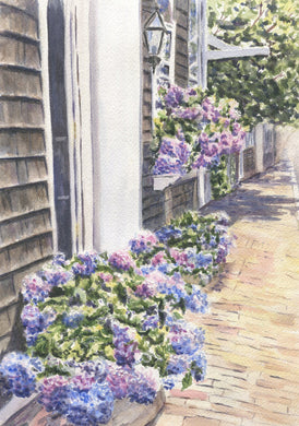 Nantucket Hydrangeas Watercolor painting giclee print Cape Cod painting Cape Cod print Nantucket painting framed art - Leigh Barry Watercolors