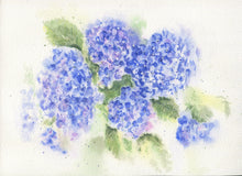 Load image into Gallery viewer, Hydrangea watercolor ornament blue floral ornament hydrangeas painting hydrangeas art blue watercolor flowers blue hydrangeas art painting - Leigh Barry Watercolors