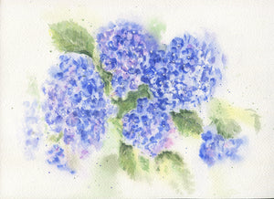 Hydrangea watercolor ornament blue floral ornament hydrangeas painting hydrangeas art blue watercolor flowers blue hydrangeas art painting - Leigh Barry Watercolors