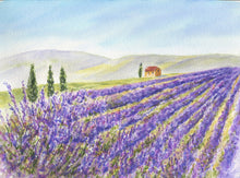 Load image into Gallery viewer, Lavender Field: original lavender painting watercolor lavender print Provence France landscape painting landscape painting print purple art - Leigh Barry Watercolors