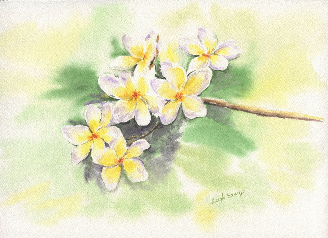 Plumeria: floral watercolor giclee print archival yellow flowers home decor wall art - Leigh Barry Watercolors