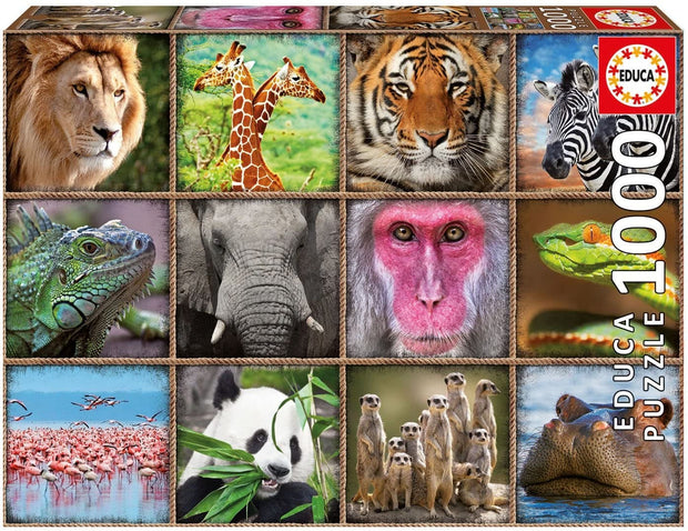 1000 Wild animals collage
