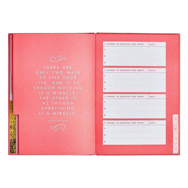 GRATITUDE JOURNAL INSPIRATION - 10954001
