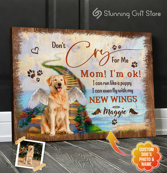 Dog Remembrance Gifts, Dog Passed Away Gift, Sympathy Gift For Loss Of Dog, Don't Cry For Me