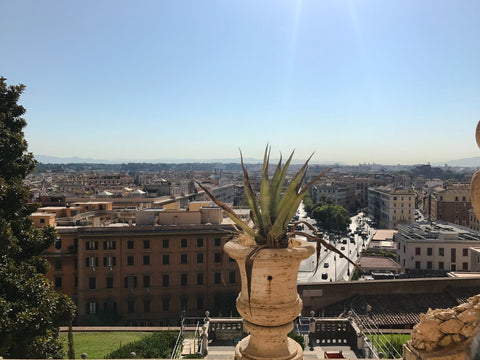 View of Borghese