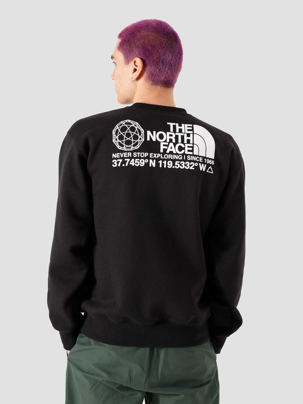 TheNorthFace_coordinates crewneck-black_back-view