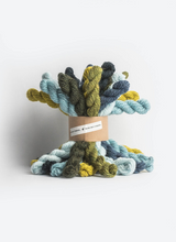 Load image into Gallery viewer, Blue Sky Fibers Woolstok Bundle Kit