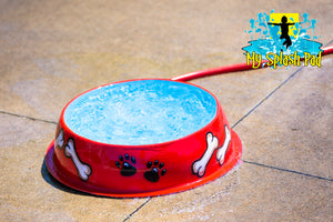 Dog Bowl Water Play Features