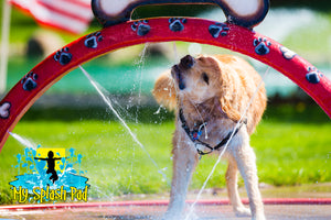Doggy Wash Water Play Features