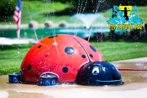 Large Ladybug Mobile Spray and Play Features