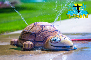 Small Turtle Mobile Water Play Features