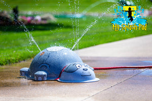 Small Spike Dog Water Play Features