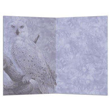 Load image into Gallery viewer, Snowy Owls All Occasion Greeting Card