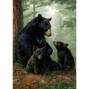 Bear Family All Occasion Greeting Card 6 pack