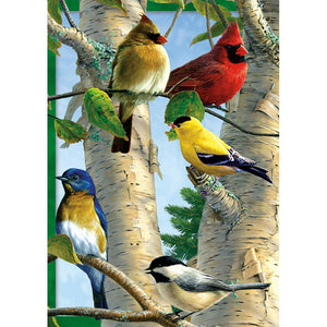 Favorite Songbirds All Occasion Greeting Card 6 pack