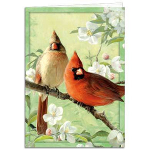 Orchid Cardinal Greeting Card