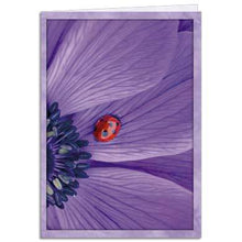 Load image into Gallery viewer, Purple Rays Greeting Card