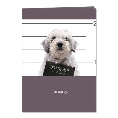 Troublemaker Greeting Card