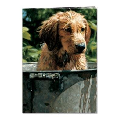 Washed Up Birthday Greeting Card 6 pack